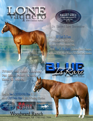 Blue Is Rare