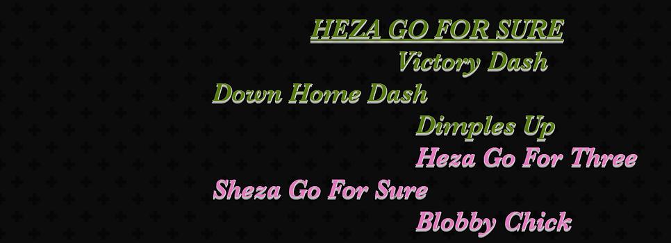 pedigree heza go for sure.png