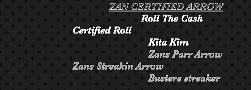 pedigree zan certified arrow.png