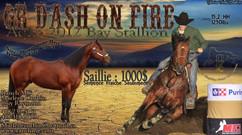 Gr Dash On Fire