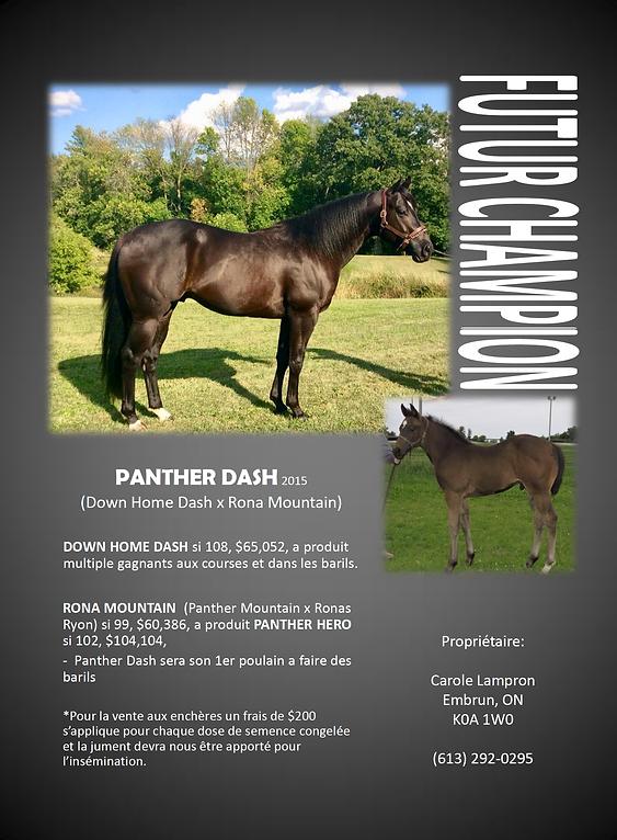 panther dash.png