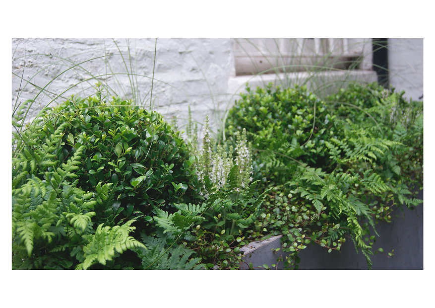 Planter Design