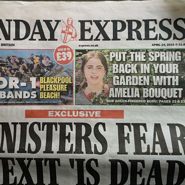 The Sunday Express