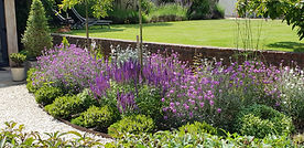 Surrey Planting Design.jpg