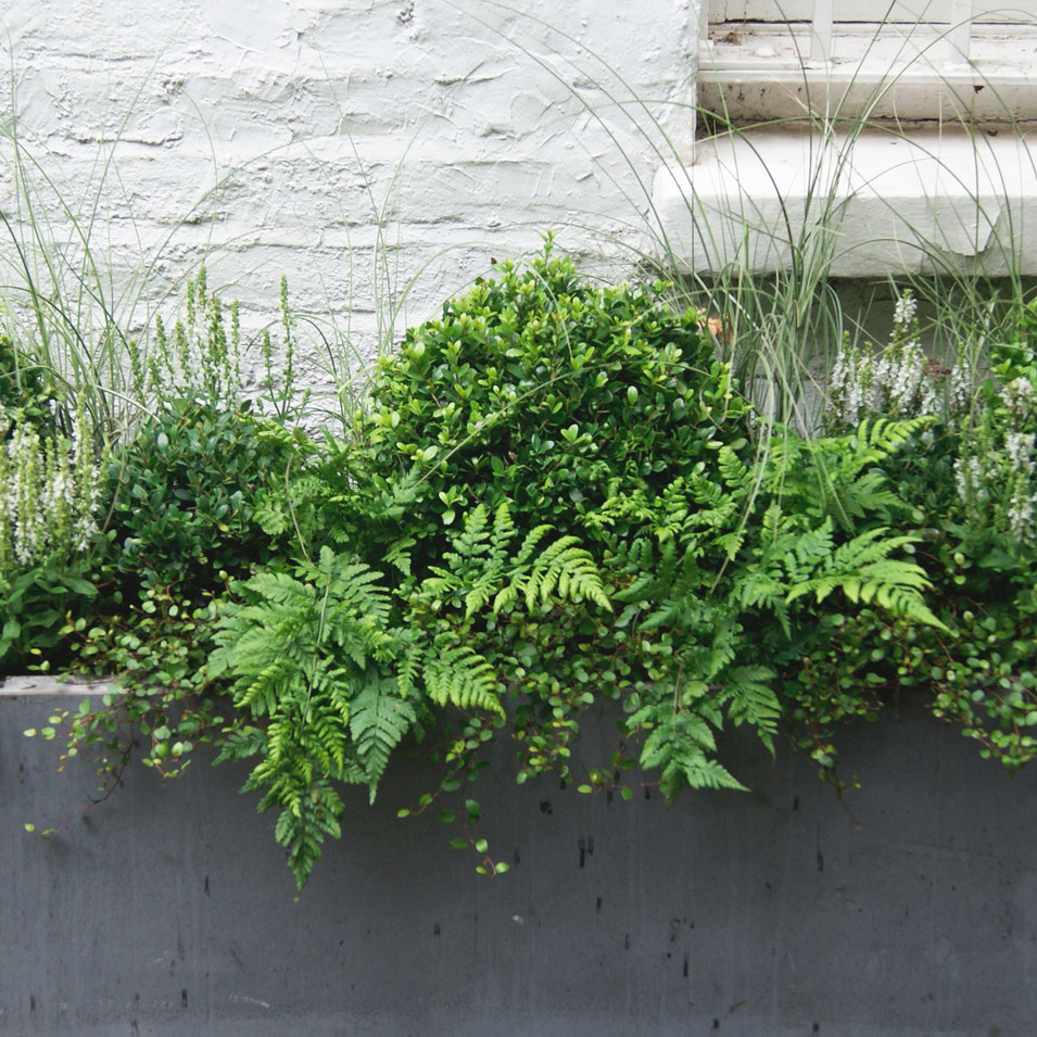 Slate Coloured Planters