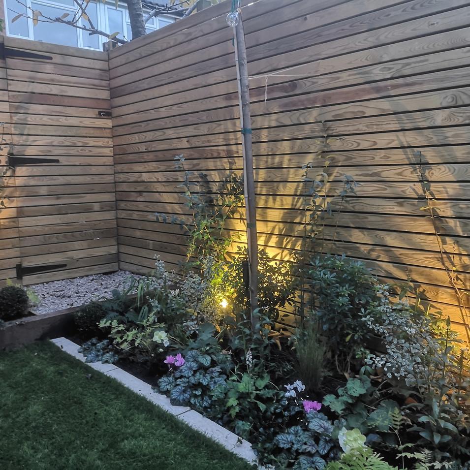 Earlsfield garden design project