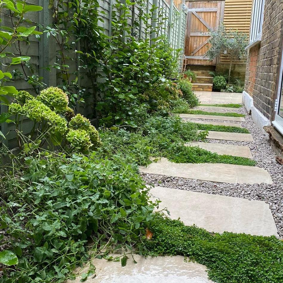 Streatham Garden Design
