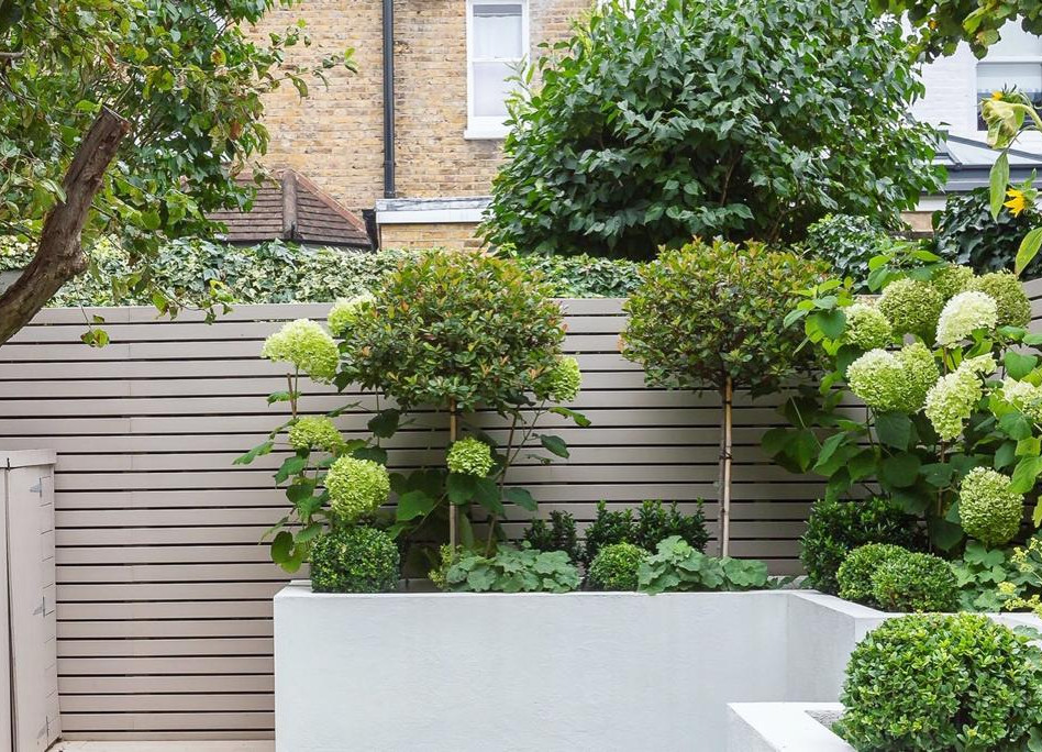 Wimbledon Garden Design Project