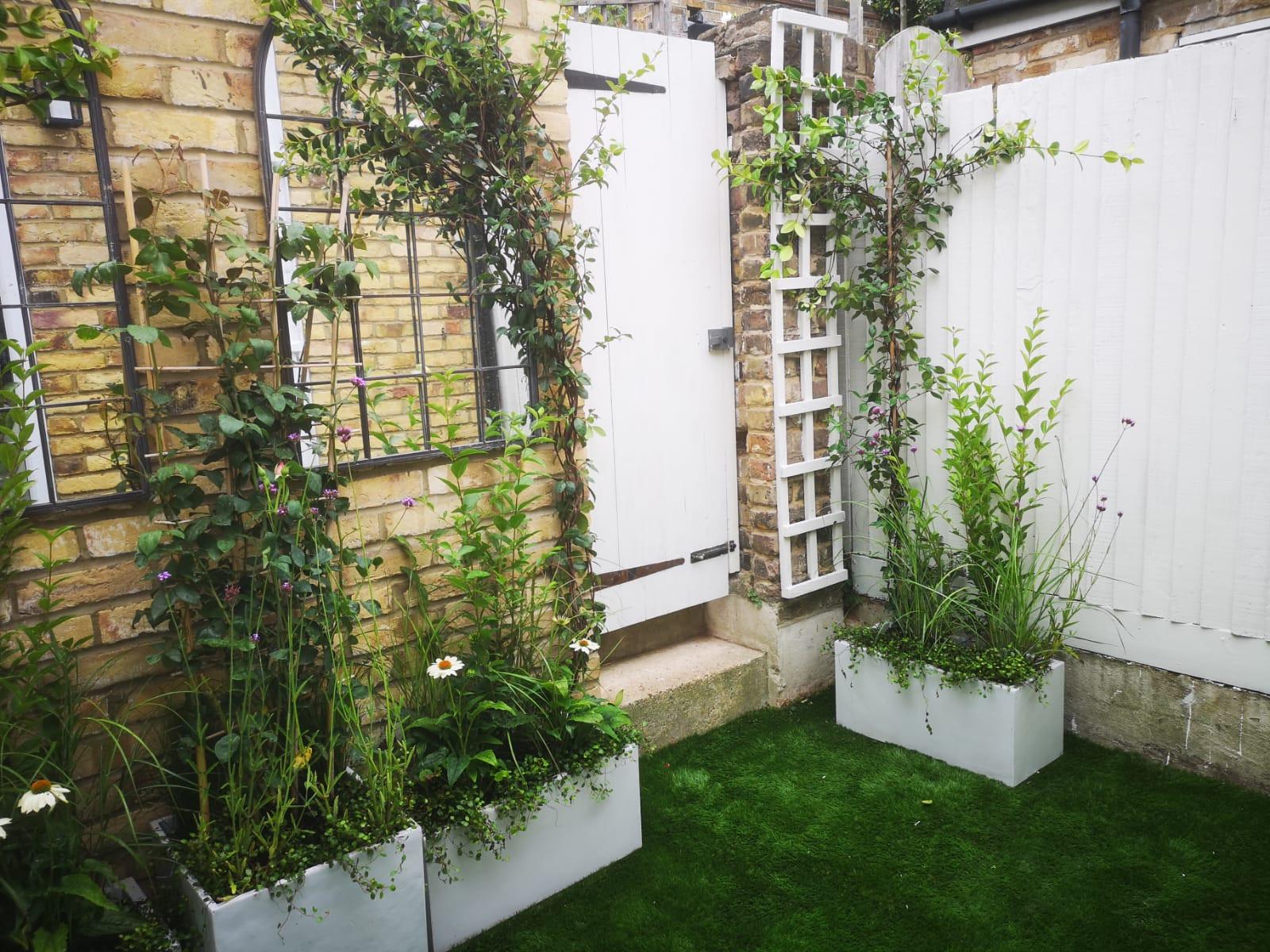 Richmond garden design