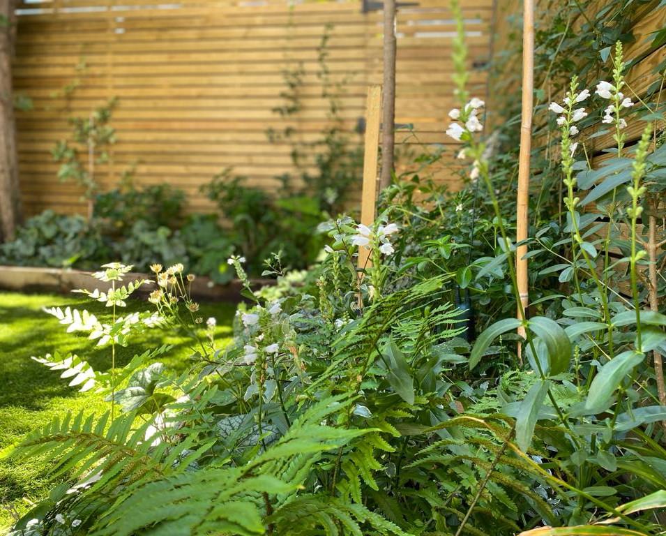 Small Garden Design in Wandsworth