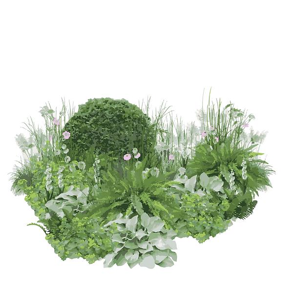 Planting for Hampton .png