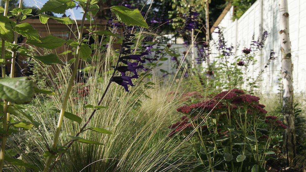 Garden Design in Chingford