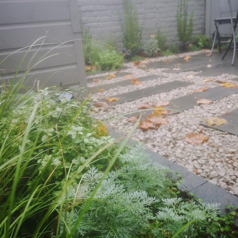 Garden design in Stockwell, London