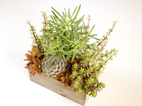 Wood Arrangement with Height