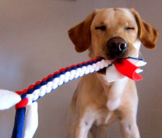Check out our fleece dog toys