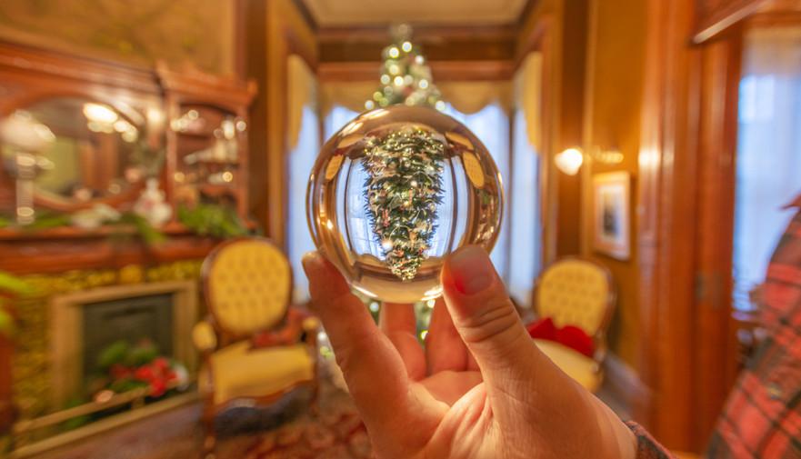 Christmas tree seen through a crystal ball.