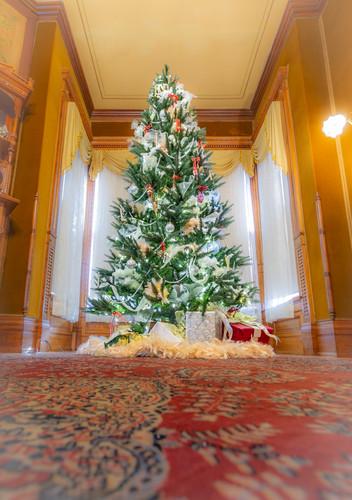 Holiday tree 2018