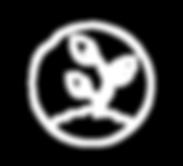 iconswhite-02.png