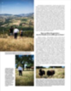 bocuse mag pdf 2.png