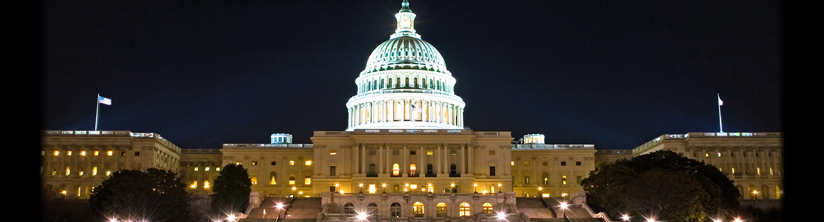 Capitol_at_Night_1665_450.jpg