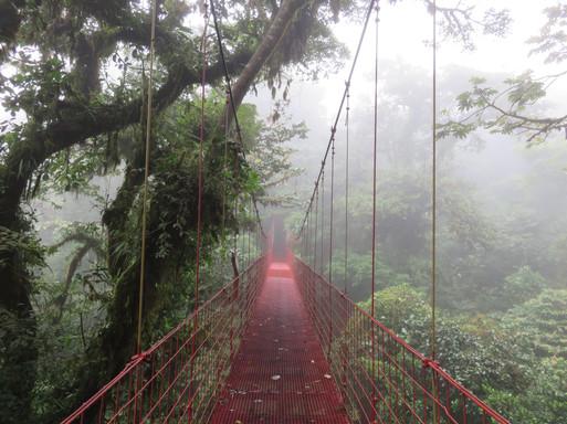 Monteverde Cloud Forrest, Costa Rica