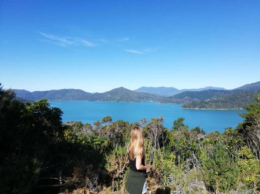 Hopewell Lode, Marlborough Sounds, Nieuw Zeeland