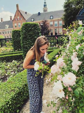 Renaissance tuin Prinsentuin in Groningen