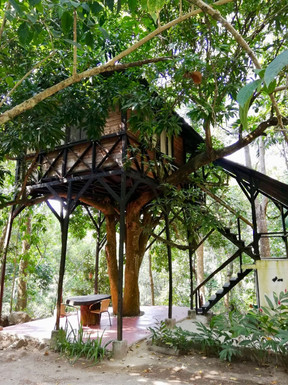 Boomhut, Coaba Biological Reserve, Colombia