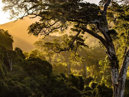 Zuid Afrika- deel 7: Tinus & Maly in Afrika