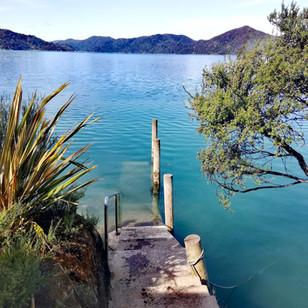 Nieuw Zeeland- deel 1: Long Story Short