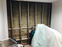 Water and Mold Damage Repair