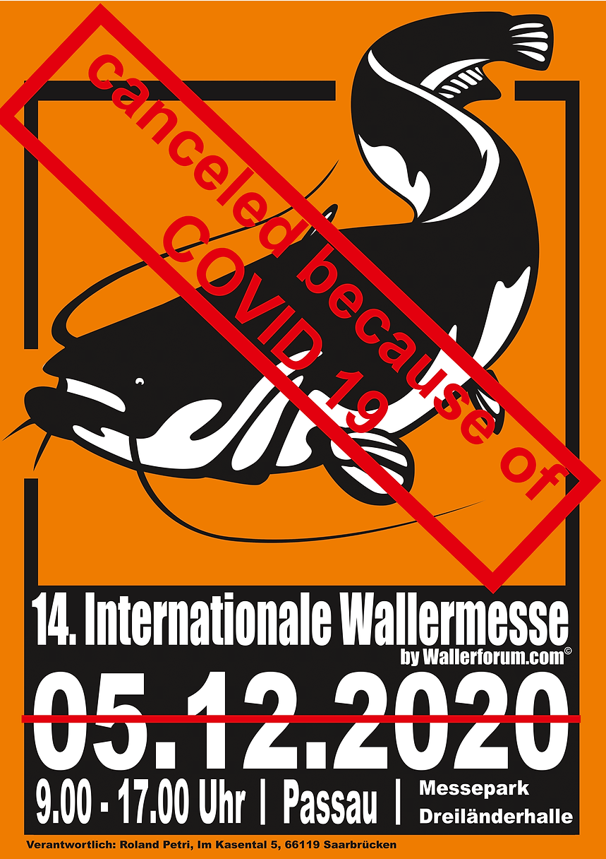 Wallermesse COVID 19-1.png