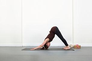 yoga-amrita-dog-pose.jpg