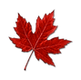 kisspng_canada_maple_yUx5V.png