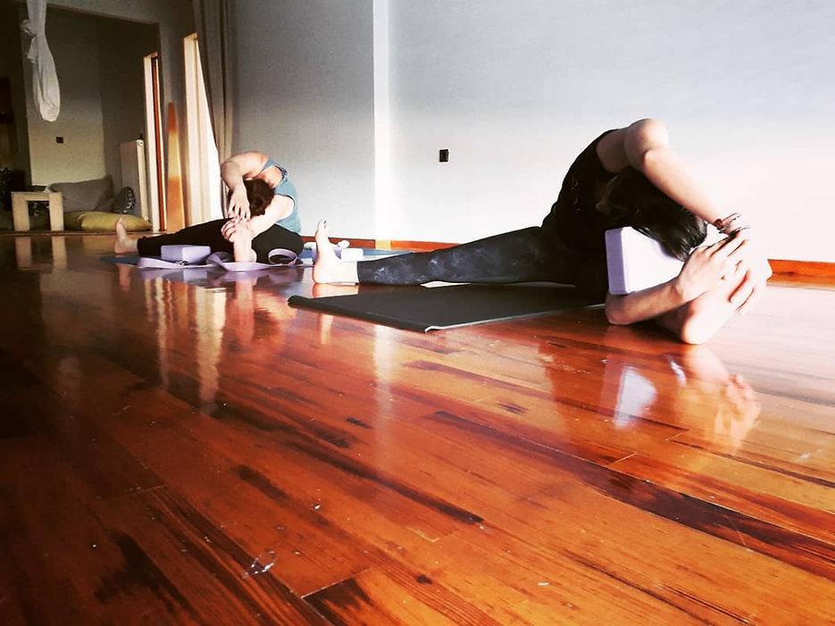 Yin Yoga Online Teacher Training Course