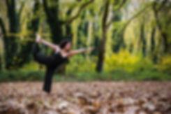 Πιστοποιημένη Εκπαίδευση Δασκάλων Aerial Yoga Alliance