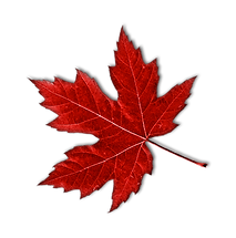 kisspng_canada_maple_KPCdt.png