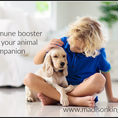 QUICK IMMUNE BOOST FOR YOUR ANIMAL COMPANION