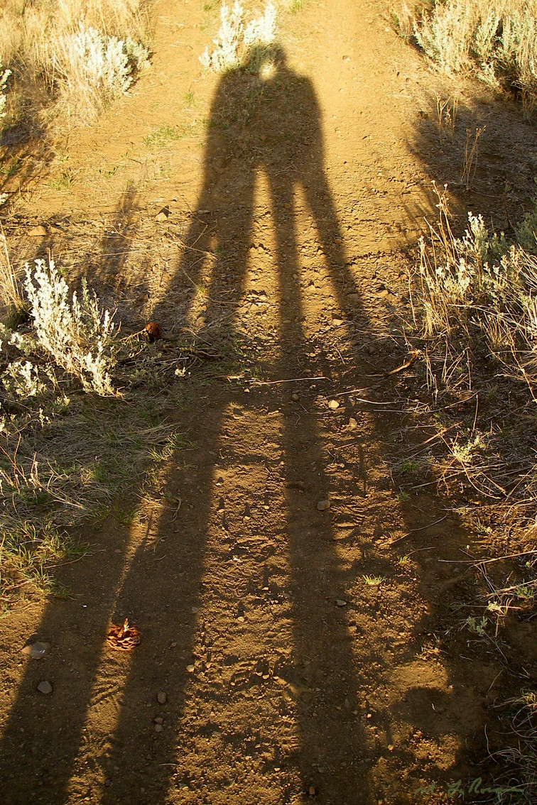 """Hillside Shadow"""