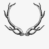 The White Hart Inn logo
