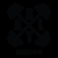 Salt-logo-01.png