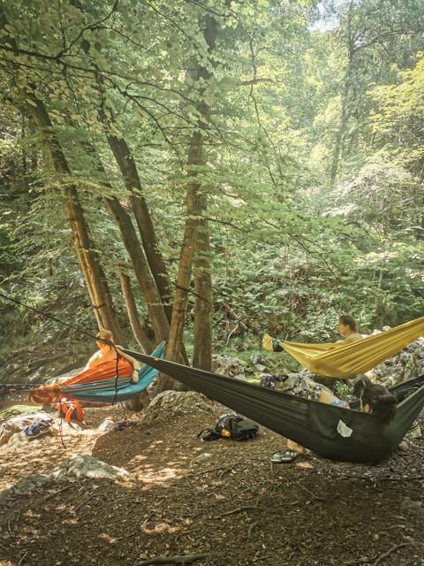 people in hammocks in nature
