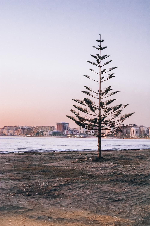 Vlore beach
