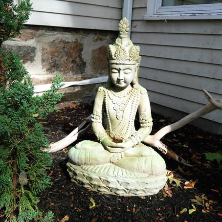 Meditation Practice Groups