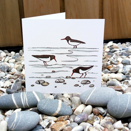 alison-hullyer-oystercatcher-greetings