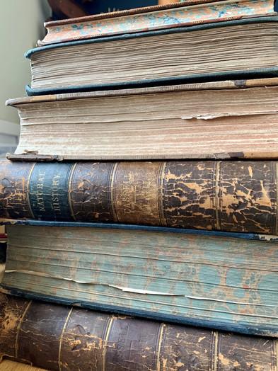 ems-vintage-prints-rescued-booksjpg