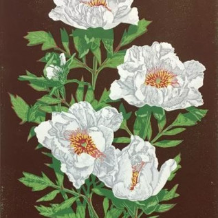 'White Peony' Linocut
