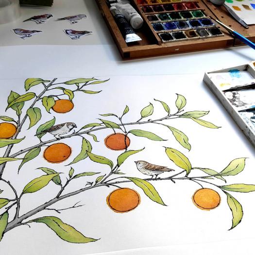 alison-hullyer-orange-grove-work-in-progress-on-desk.jpg