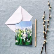 Greetings Card | £2.50