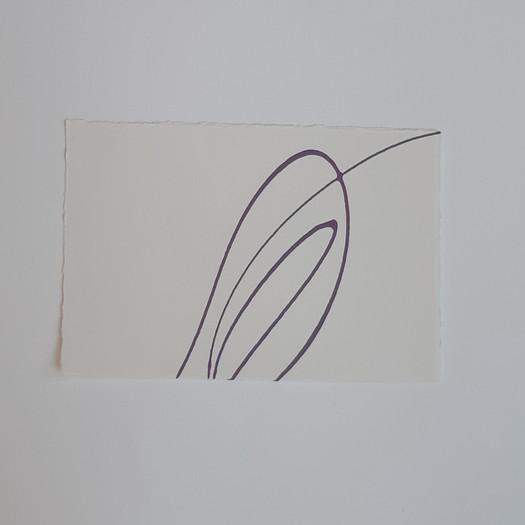 emily-jolley-pelt-on-paper.jpg